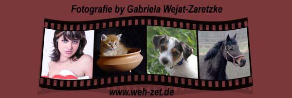 Weh-Zet Fotografie und Design - Gabriela Zaretzke